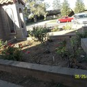 Landscaping of Grotto Progress. by Beaufication Environment Committee photo album thumbnail 6