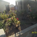 Landscaping of Grotto Progress. by Beaufication Environment Committee photo album thumbnail 8